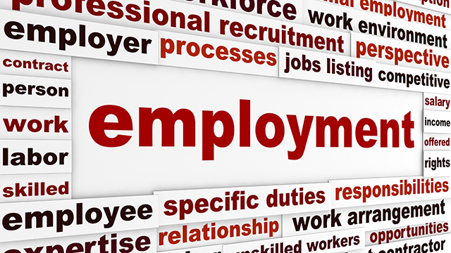 How To Thrive In A Temporary Employment Job Market
